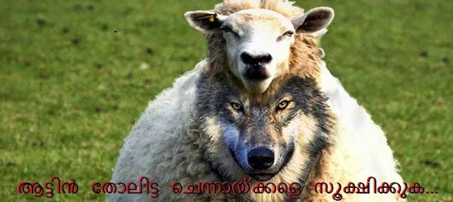 http://4.bp.blogspot.com/-IUT34SPWMV0/U-uMARqQQ9I/AAAAAAAAA2s/K-PzrDqVHp0/s1600/wolf-sheep.jpg