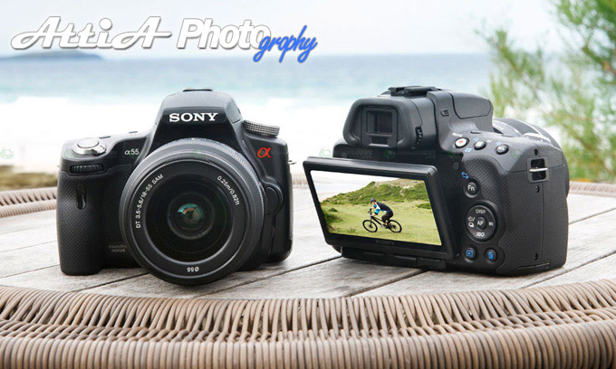 Sony Alpha A55 Photography Camera - Review