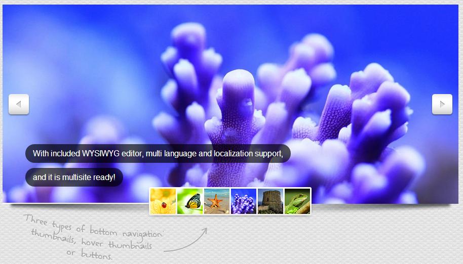 Cute Slider WP – 3D & 2D HTML5 WordPress Slider