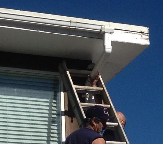 32 Design Fails That Make Little — To Zero — Sense - So it looks like the ladder's stuck