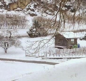 Le courtil des po mes albe liturgie de l 39 hiver au jardin for Hiver au jardin