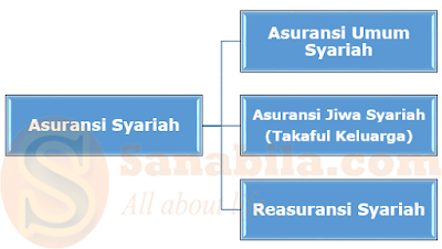 Jenis-Jenis Bidang Usaha Asuransi Syariah