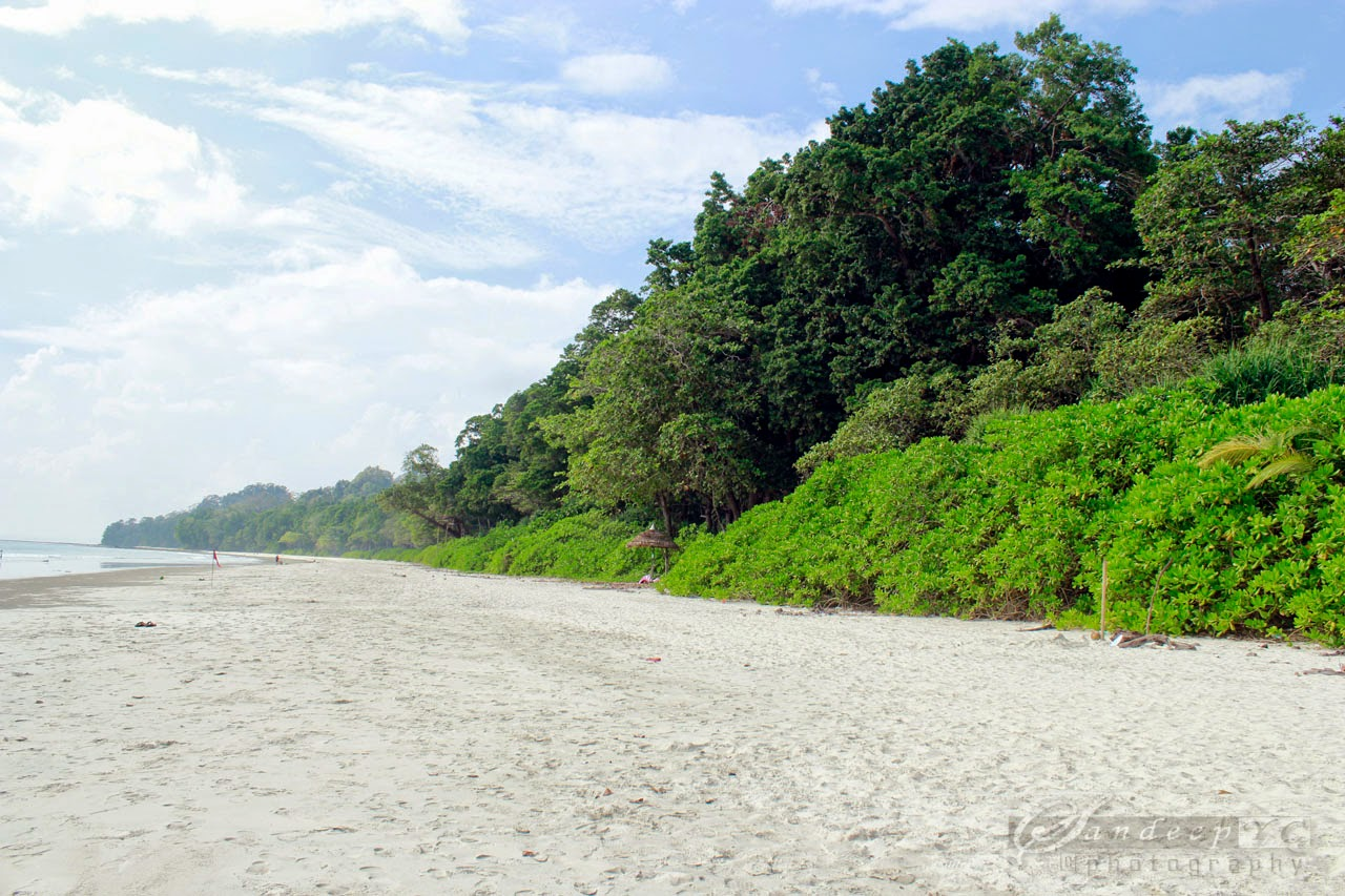 Long Shoreline of the Radhanagar Beach