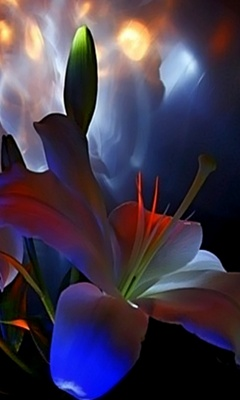 Mobiles Samsung Mobile Wallpapers For Free Downloading 3D Flowers F700 Animated 3d
