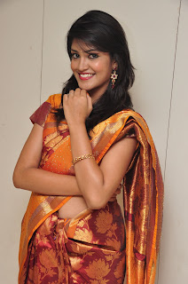 Model krupali in silk saree at cmr ashadam event 011.jpg