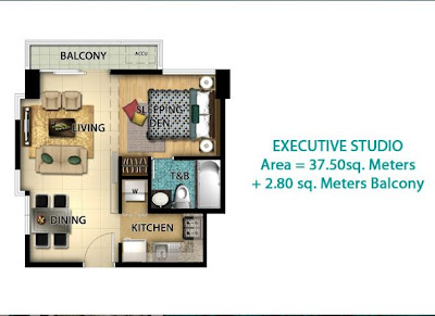 8 Newtown Boulevard Pre-Furnished Condominium For Sale in Mactan Newtown Mactan Island Cebu