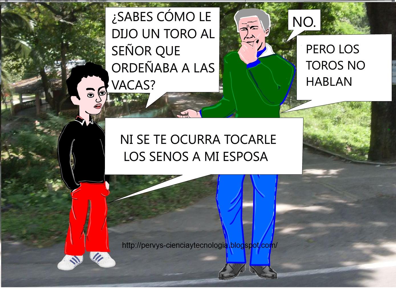 CHISTE GRÁFICO: EL TORO CELOSO