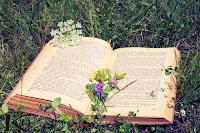 Leer es otra forma de amar