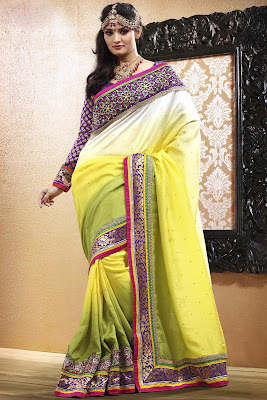 latest Party Wear Beautiful Indian Saree Collection 2013