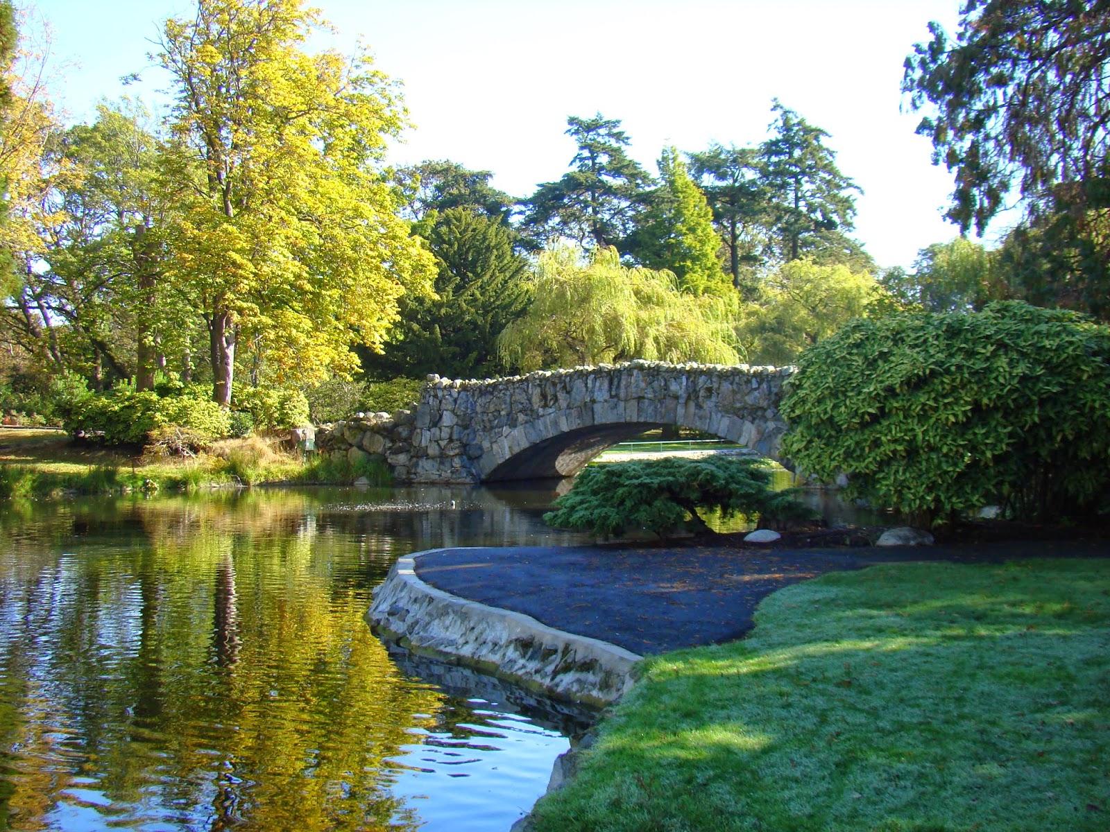 Мост в парке Beacon Hill