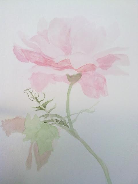 color aguado de acuarela, rosa pintada