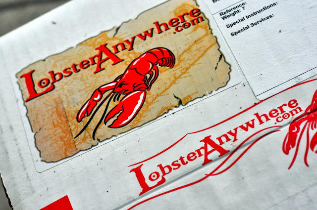 Lobster Anywhere Package | Taste As You Go