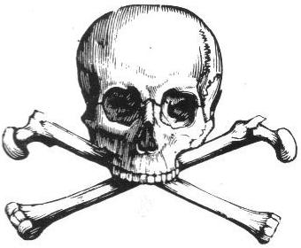 Bone, Skeleton, Pirate