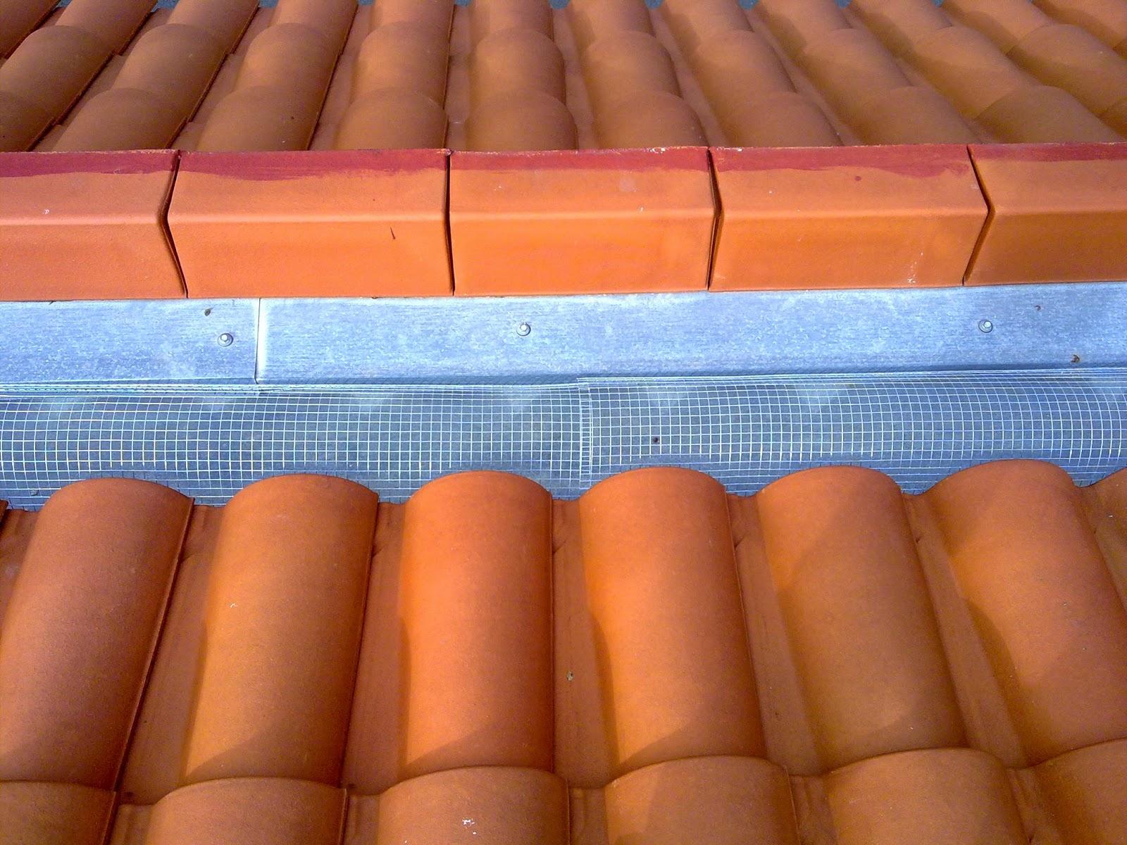 Reformas chimeneas madrid 644 34 87 47 - Tragaluces para tejados ...