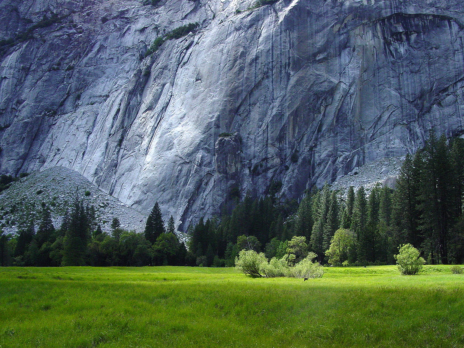 Best nature wallpapers collection ever - Natures wallpapers for desktop ...