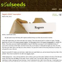 Living With Regret by Soulseeds