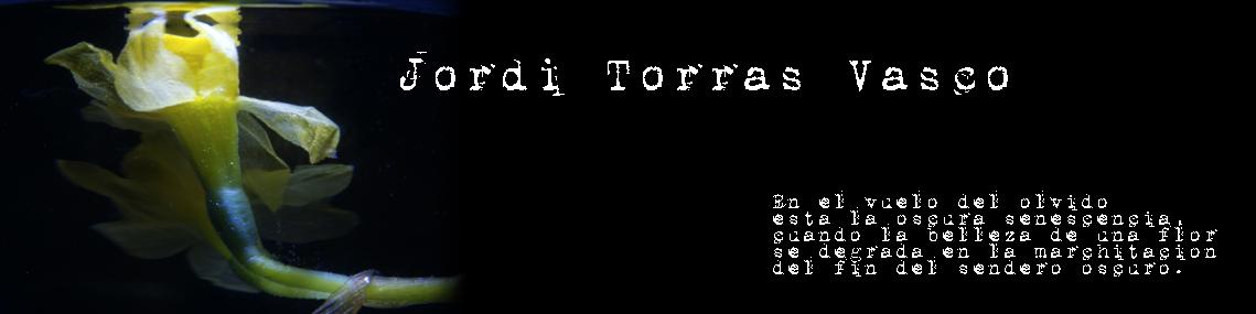 Jordi Torras Vasco