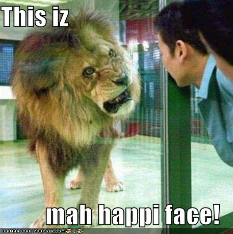 : Funny lion, lion pictures, lion funny, funny lions, funny lion king ...
