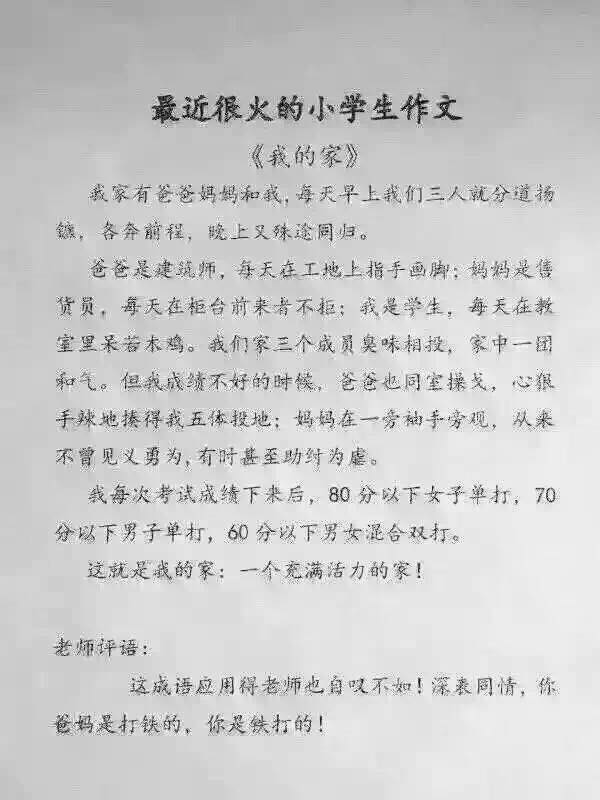chinese essay about school