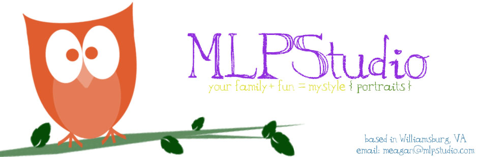 MLP Studio | Williamsburg, VA | Custom Family Portrait Photography