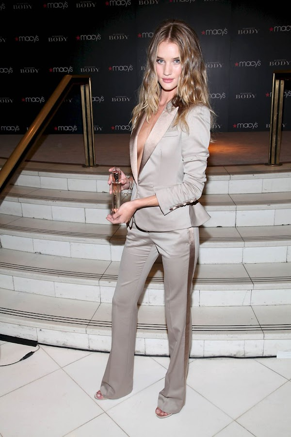3 Rosie Huntington Whiteley Looks Hot in Beautiful Dress