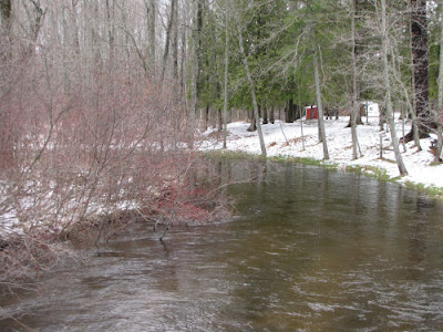 Little Manistee River at Old M63