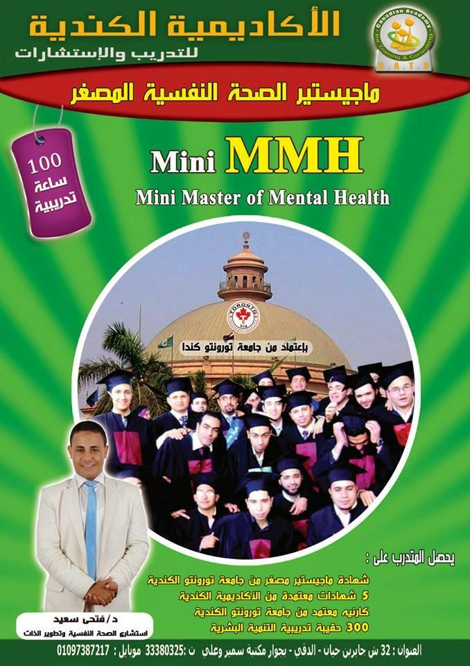 Mini MHD