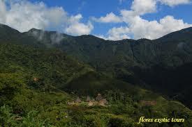Hutan Wae Rebo, Nusa Tenggara Timur
