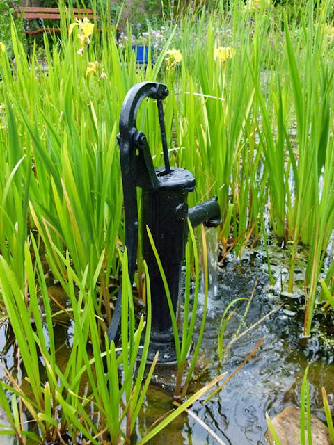 Burton in Lonsdale, open gardens, pond, iris, pump