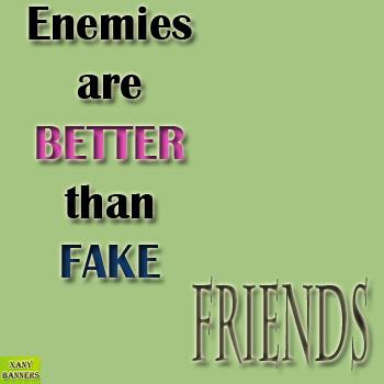 fake friends ~ banner