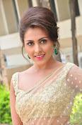 Madhu Shalini sizzling in saree-thumbnail-1