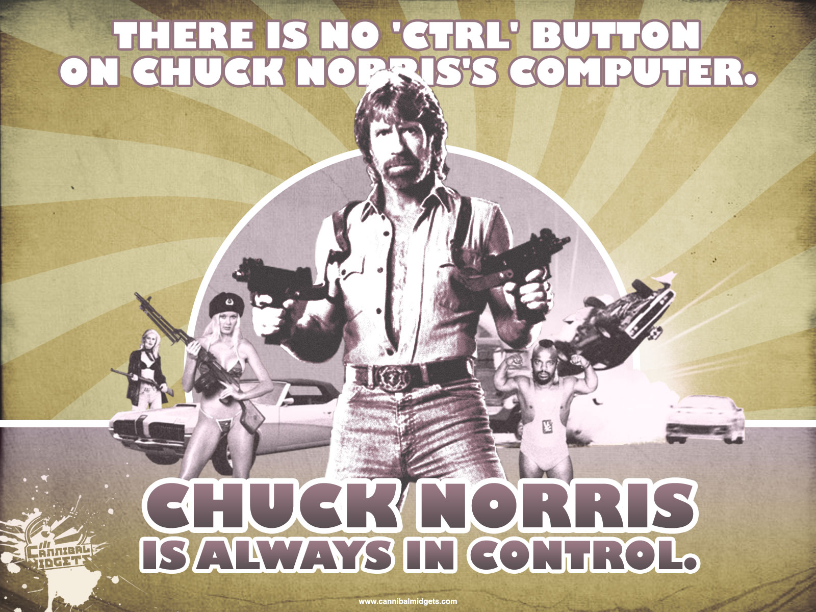 More Than Great Facts About Chuck Norris Like