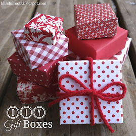 DIY Gift Boxes
