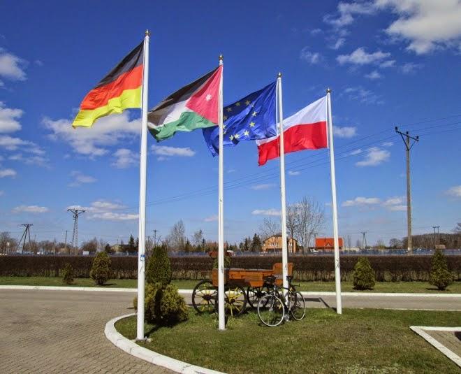 Ozo-flagi