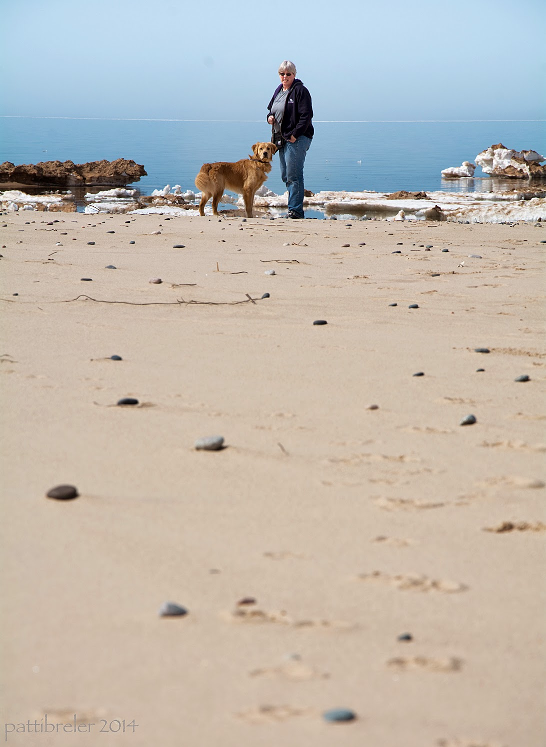A far-away shot of a woman wearing blue jeans, a grey t-shirt and a purlple zipped sweatshirt open over it, standing on the shore of Lake Superior holding a leash in her left hand. The leash is attached to a golden retriever puppy who is standing on the left toward her, but looking at the camera. In the long foreground is a sandy beach iwth small rocks strewn about. There are dirty small ice bergs floating in the blue water behind them. The sky is about the same blue as the water and the horizon can barely be discerned.