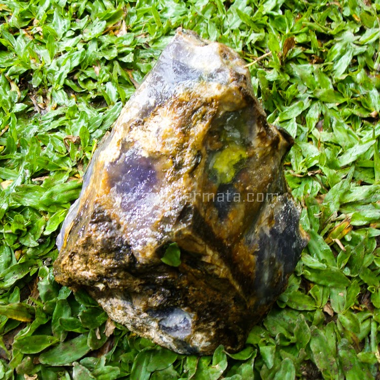 Jual Bahan Lavender 3.8Kg - SP470
