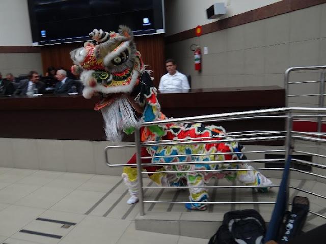Demonstração Kung-fu