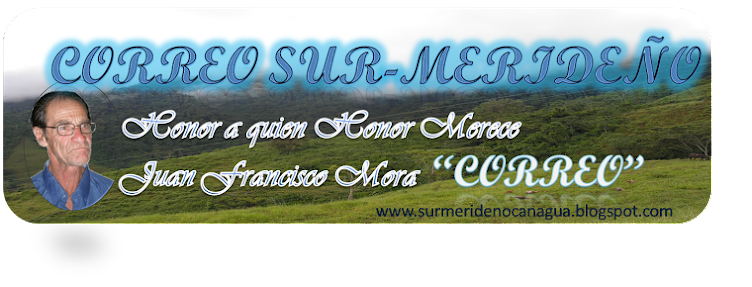 CORREO SUR-MERIDEÑO