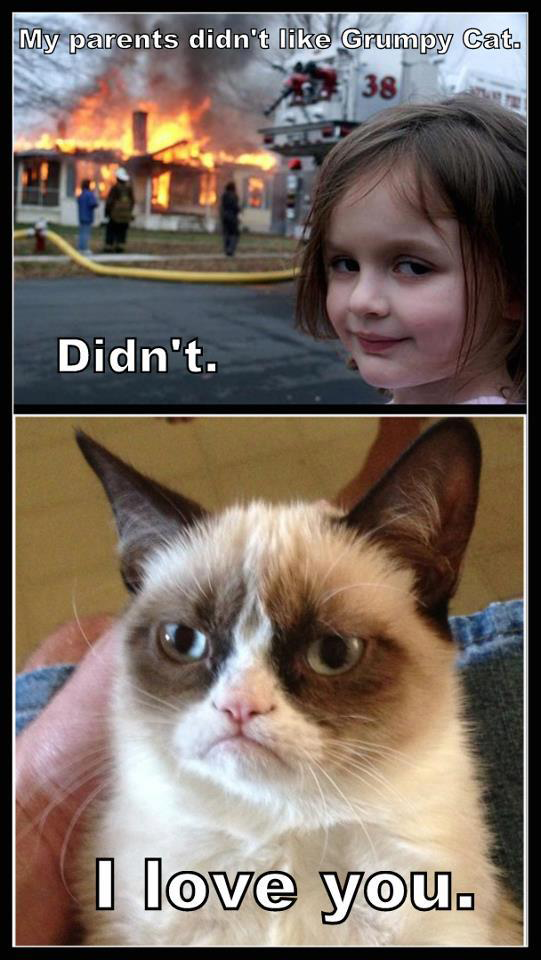 Grumpy Cat Pictures With Words