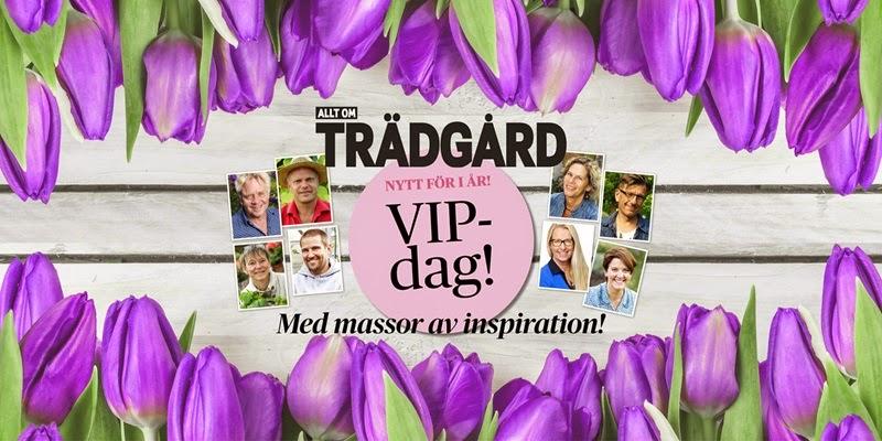 VIP -dag