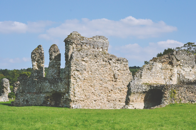 Ruins of Waverley Abbey