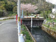 出雲井(滋賀県米原市伊吹)