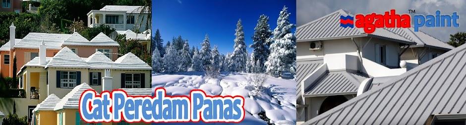 CAT PEREDAM PANAS MATAHARI | AGATHA PAINT