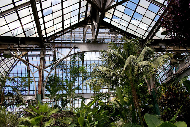 Tammy Sue Allen Photography. Chicago - Lincoln Park Conservatory.