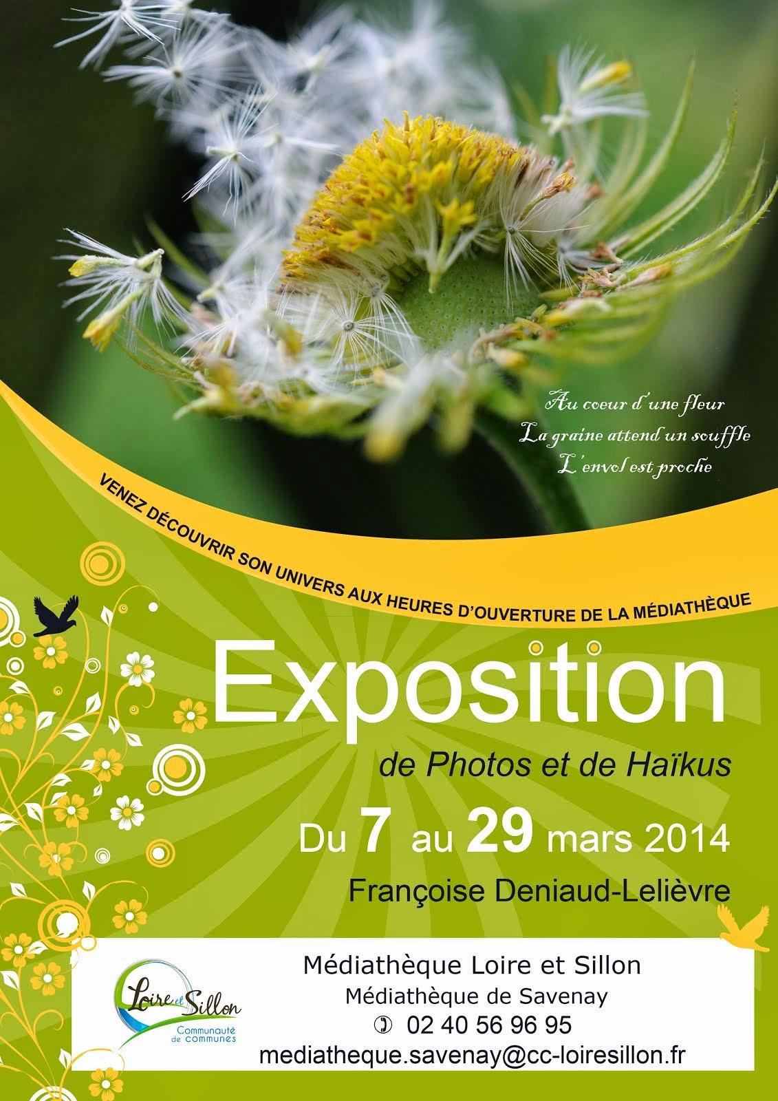 Affiche de l'exposition de mars