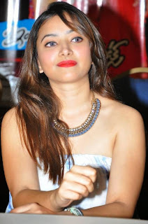Actress Swetha Basu Picture Gallery at Intelligent Idiots Press Meet 15