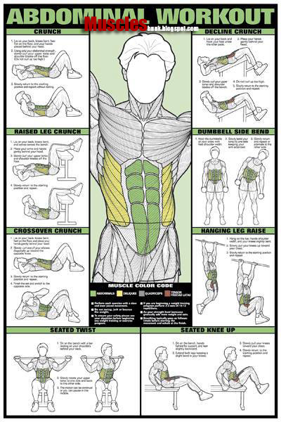 Best Exercise Chart