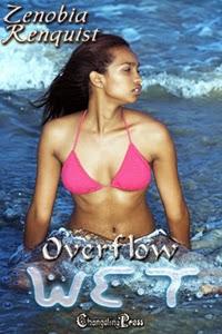 Overflow by Zenobia Renquist