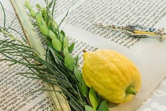 ✡ Ce este Sărbătoarea Corturilor sau Sukkot?