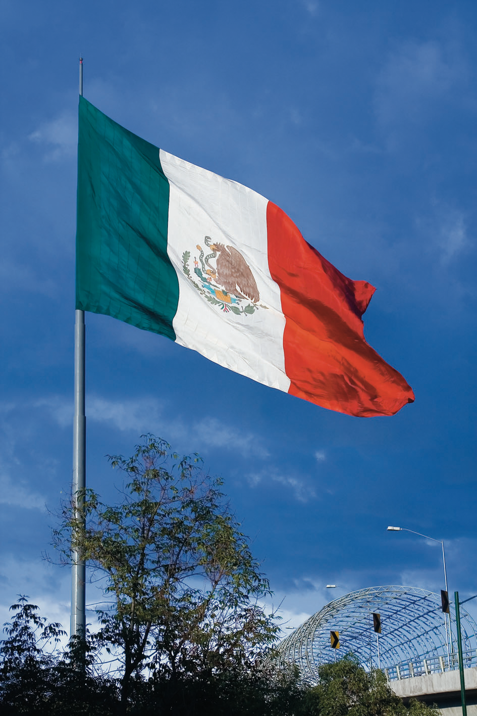 graafix mexican flags of mexico